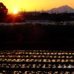 朝の筑波山  2015.10.7