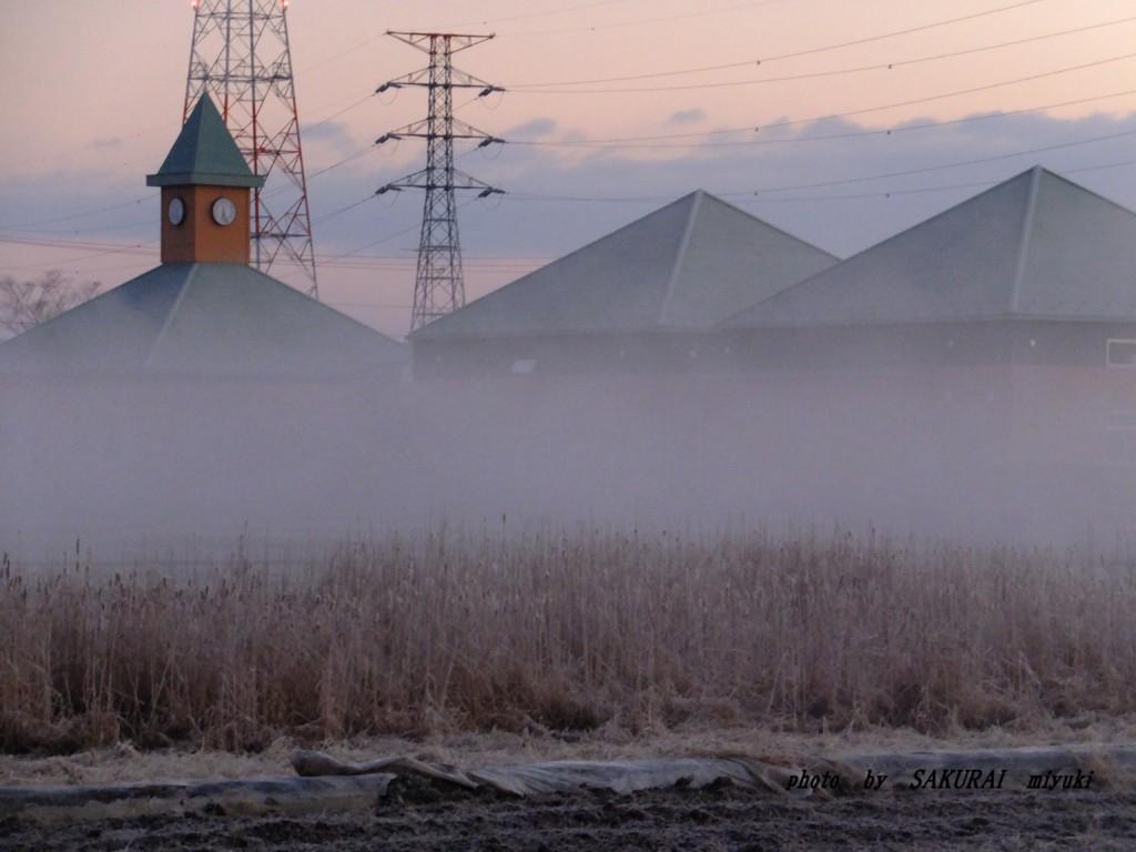 煙幕のような霧  2016.2.4