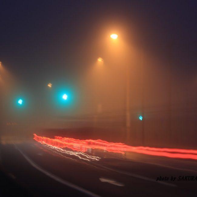 霧のキャンパス  2016.1.24