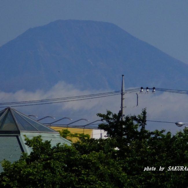 男体山  2015.5.13