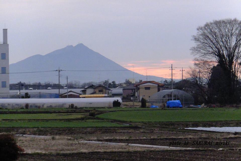 筑波山 2015.3.6