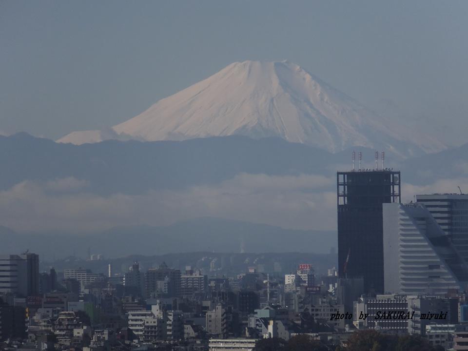 富士山  2014.11.27