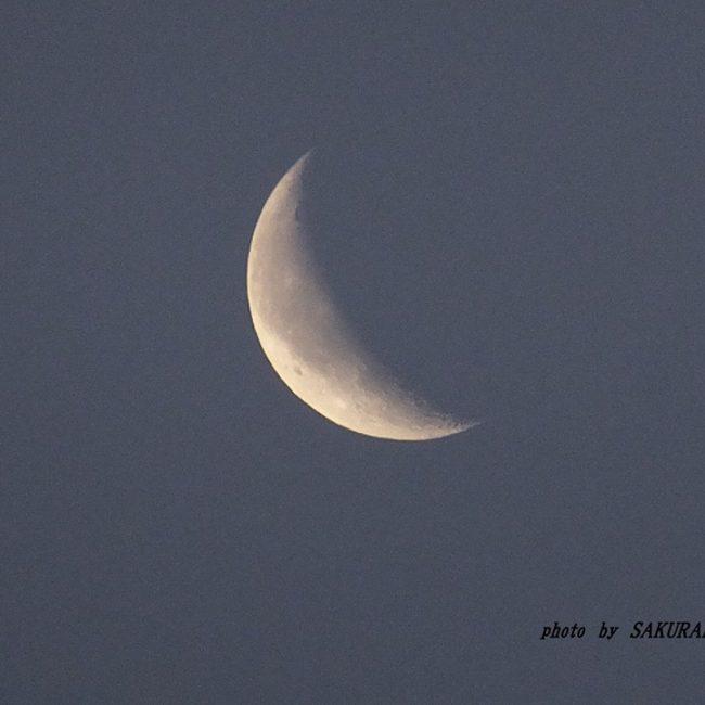 今朝の月 2014.12.17