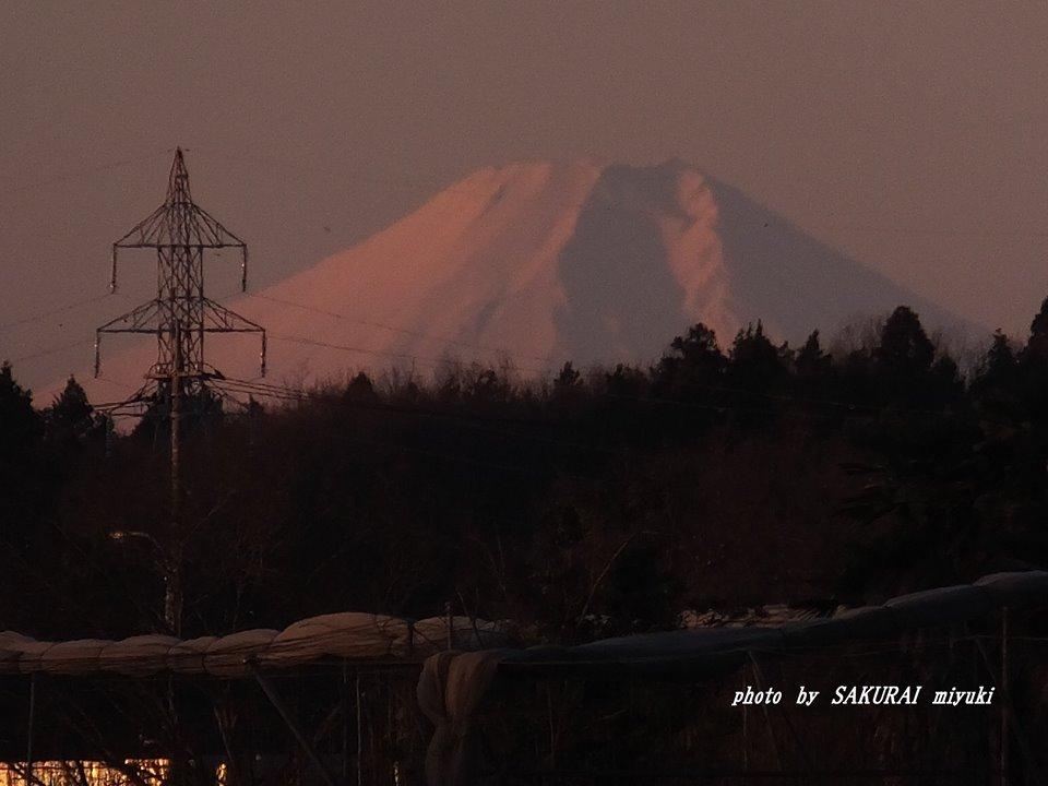 富士山 2015.1.2