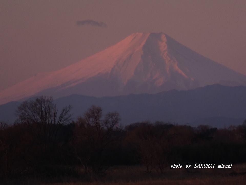 富士山 2015.1.3