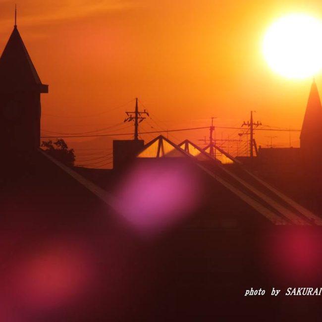 朝の光 2014.9.21
