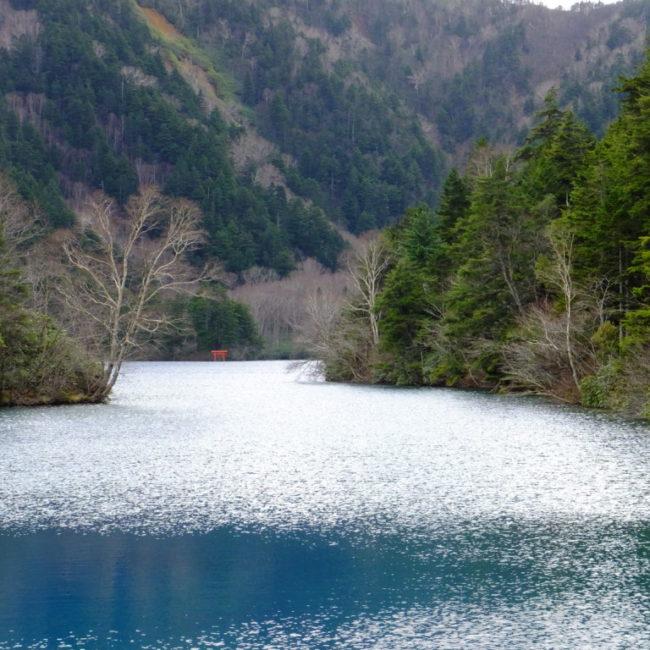 濃いブルーの大沼池 2016.11.1