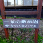長野県湯山ノ内町湯田中温泉 (小林)一茶の散歩道を歩く 2017.5.8