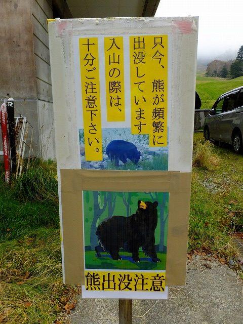 熊出没注意!