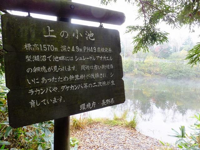 上の小池看板