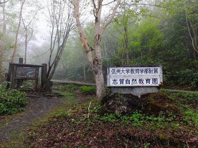 信大自然教育園入口
