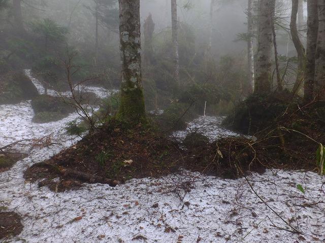 雪の残る散歩道