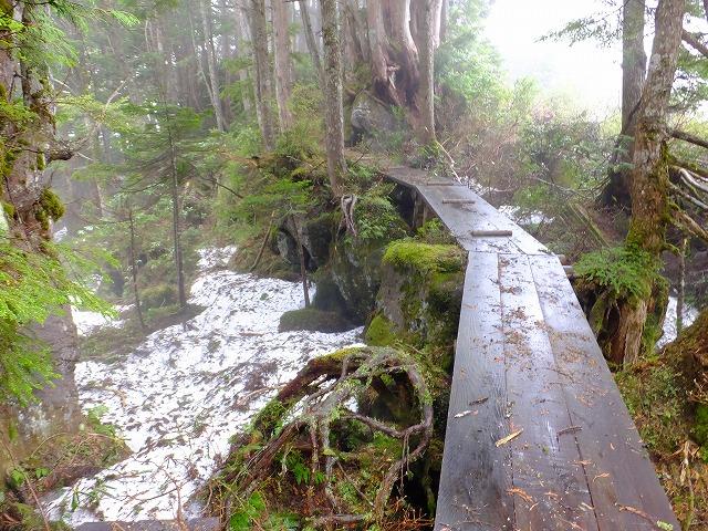 岩上の木道