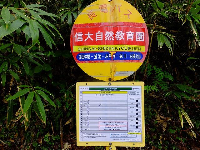 信大自然教育園バス停
