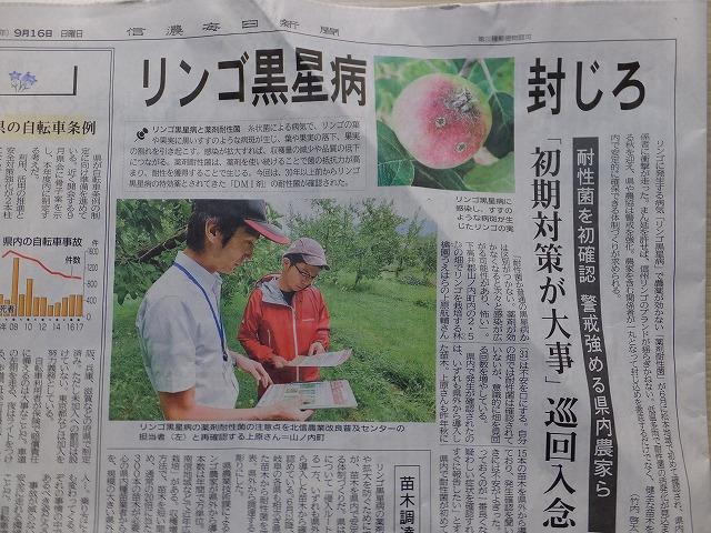 りんご黒星病の記事