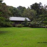 ボルネオ島で出会った風景:今回泊まったバンガロー 2014.2.13 グヌンムル国立公園
