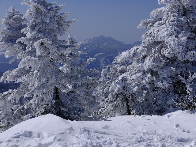 樹氷の間から四阿山 2020.2.24