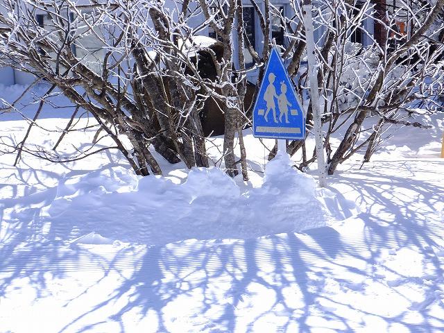雪で埋まった交通標識 @渋峠 2020.2.24
