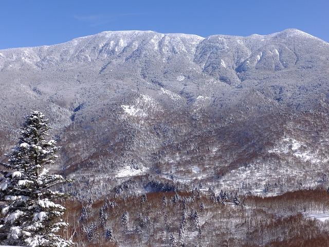 志賀高原では数少ないリフトのない岩菅山 20210205