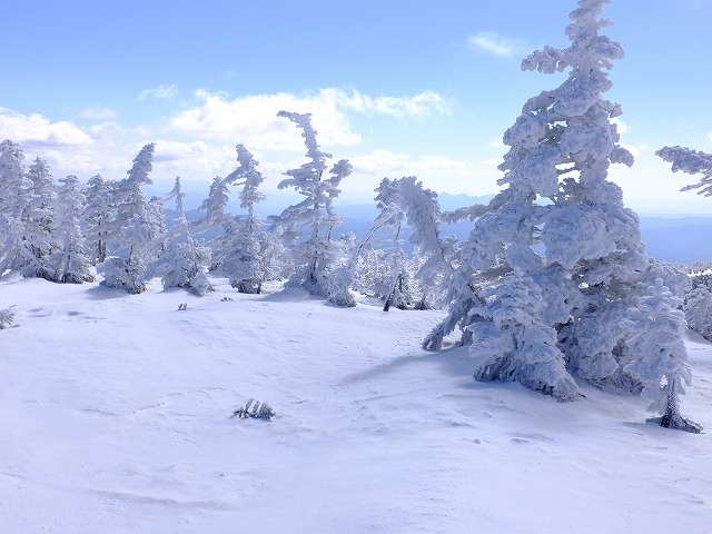 樹氷を縫ってゲレンデに 20210323