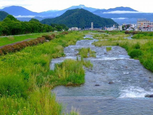 栄橋から下流を見る