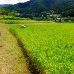 反農薬東京グループの会合に出てみて
