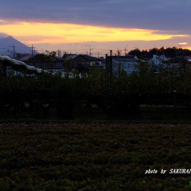 筑波山 2015.11.13