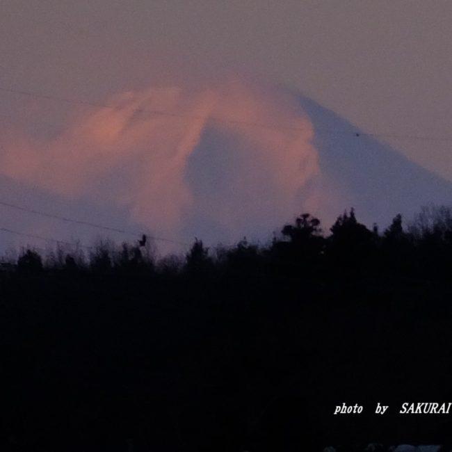 富士山  2016.1.19