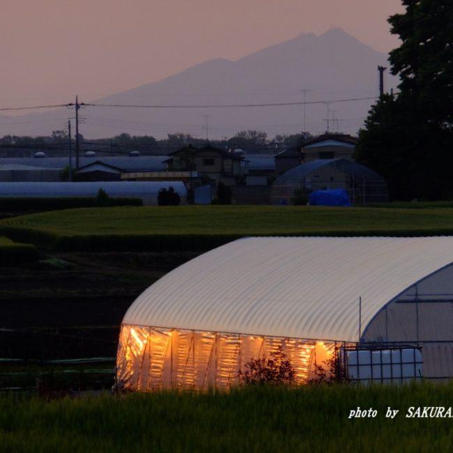 筑波山  2015.4.26