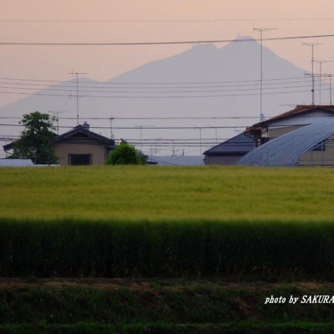 筑波山  2015.5.7