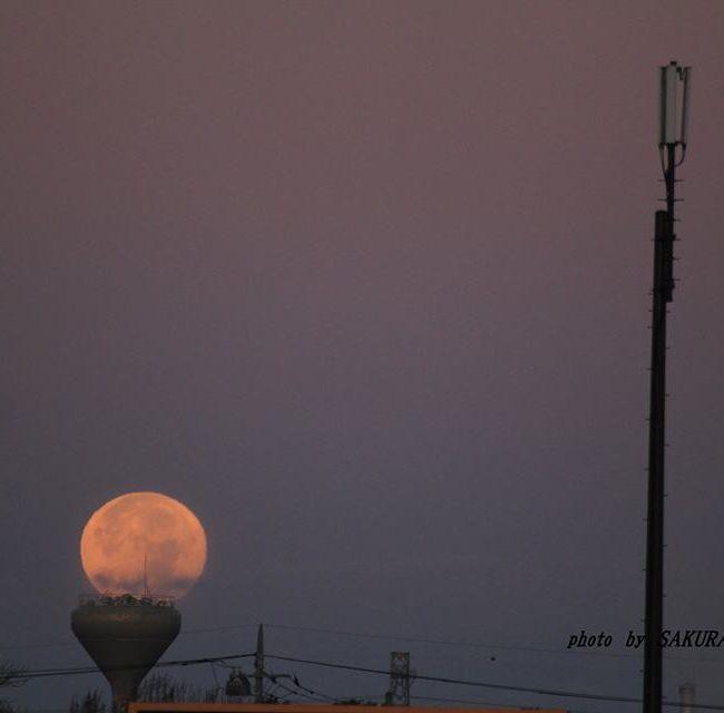 月を載せる器 2014.12.7