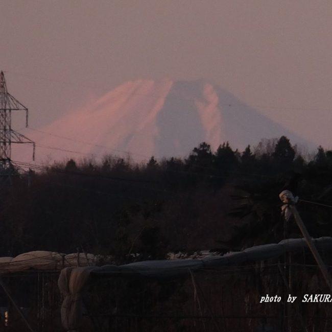 富士山 2014.12.21