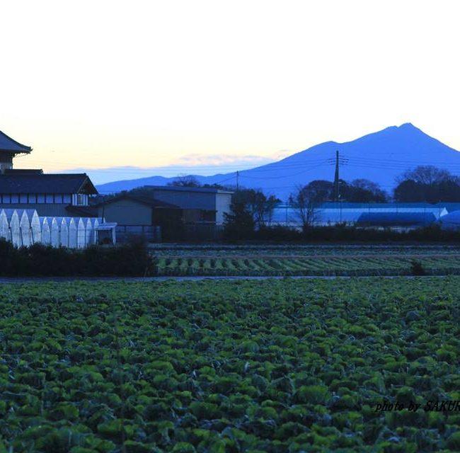 今朝の筑波山 2014.12.22