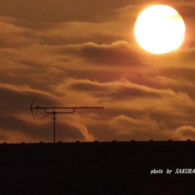 今朝の太陽 2014.10.2